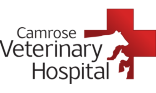 Camrose Veterinary